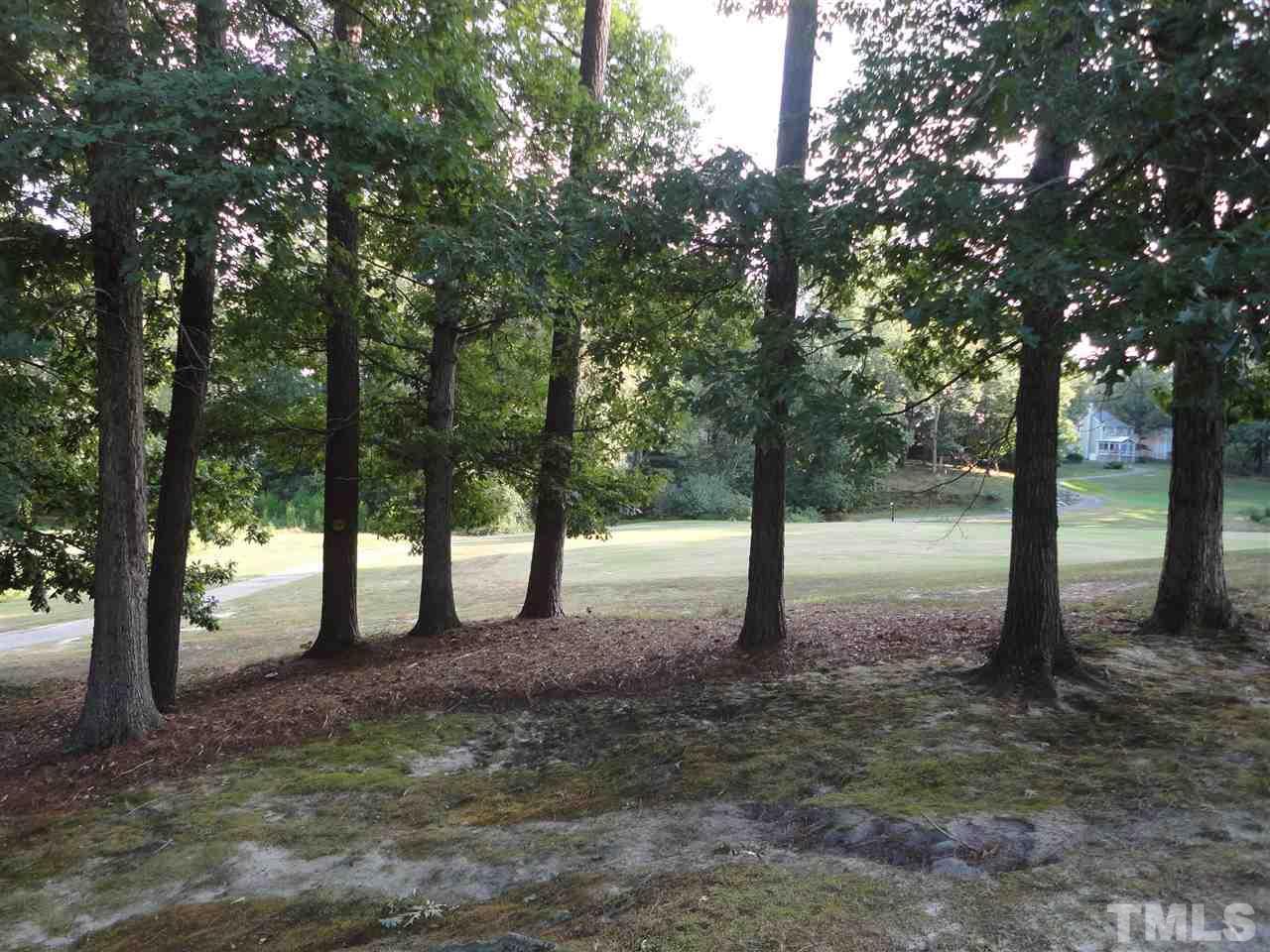 4736 Grand Cypress Court Raleigh - 23