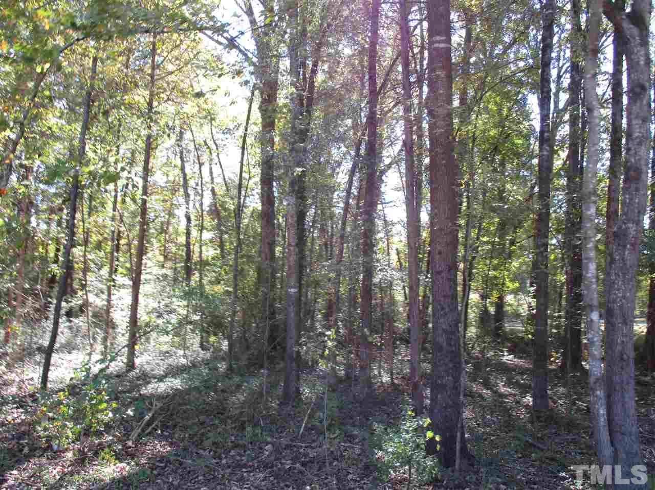 Photo of Lot 3 Pa Will Trail, Green Level, NC 27217
