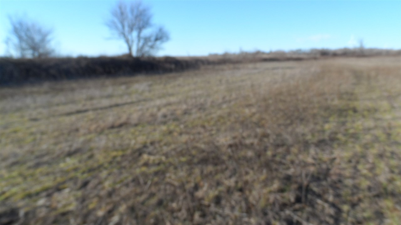 For Sale: 0000 NW 60th Ave, Harper KS