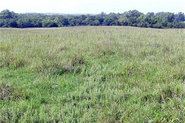 For Sale: 0000  27th Ave, Canton KS