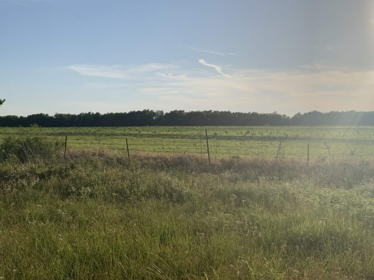 For Sale: 000  72nd Road, Winfield KS