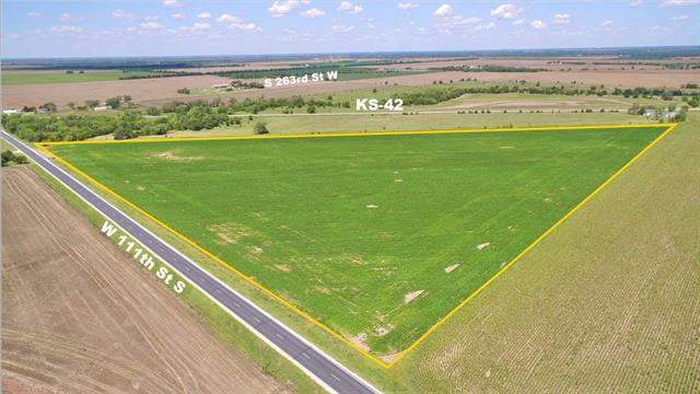 For Sale: SE of  K-42 Hwy and N of 111th St S, Viola KS