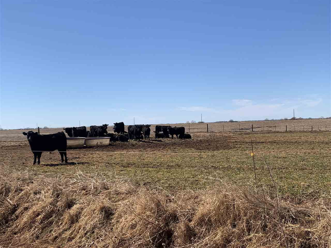 For Sale: 00000 NE 10 Ave, Harper KS