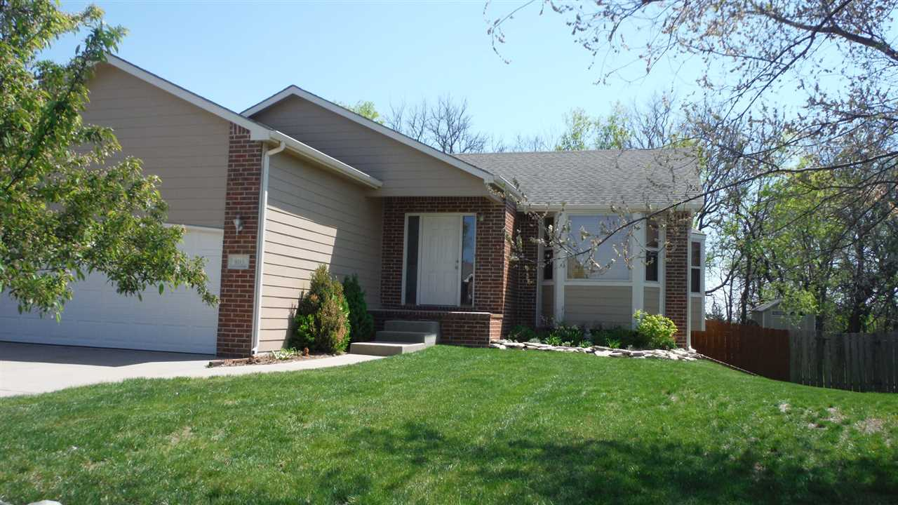 Beautiful 4 bedroom home on treed lot - Andover Schools - View out w/ deck  - Fireplace - fenced bac