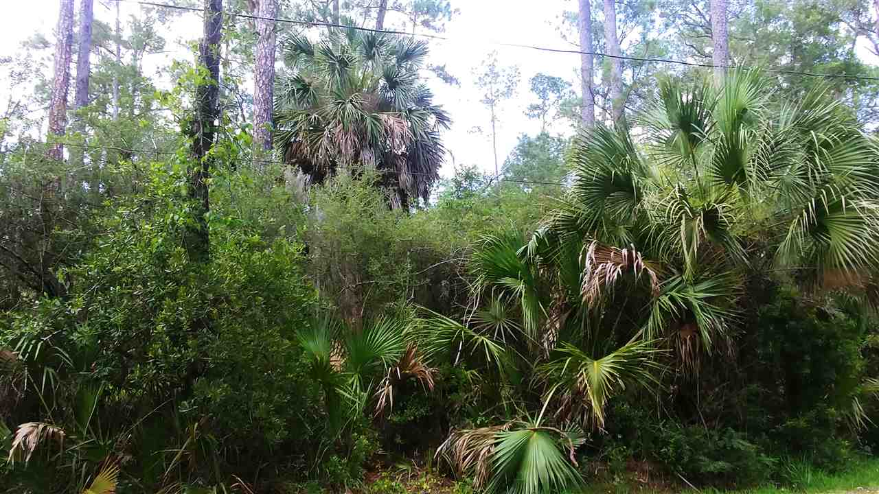 Boaters Delight!  This beautiful wooded lot with oaks, beach scrub and tall palms is perfect to build your coastal/river retreat.  Located so close to the Wakulla and St. Marks River, you can smell the fish bedding.  This lot is located on a street that dead ends into the Wakulla River and is located less than a mile from San Marco De Apalache Historic State Park and Boat Launch.  A perfect spot for a picnic or boat launch and a short ride to the St. Marks Sand Bar for a quick relaxing swim.