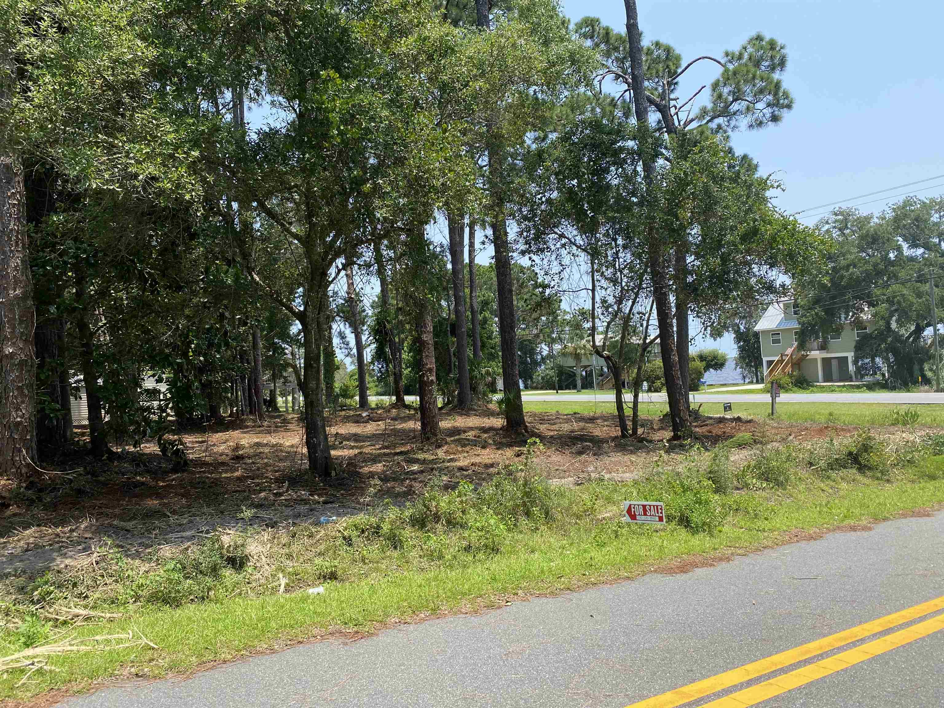 Raw land ready for developing.  Across highway 98 is a beautiful view of the Gulf of Mexico.  There are 3 lots, 0.45 acre, seller will not divide, dimensions are as follows:  Lot 20: 55 x 116 Lot 21: 50 x 140 Lot 22: 112 x 55