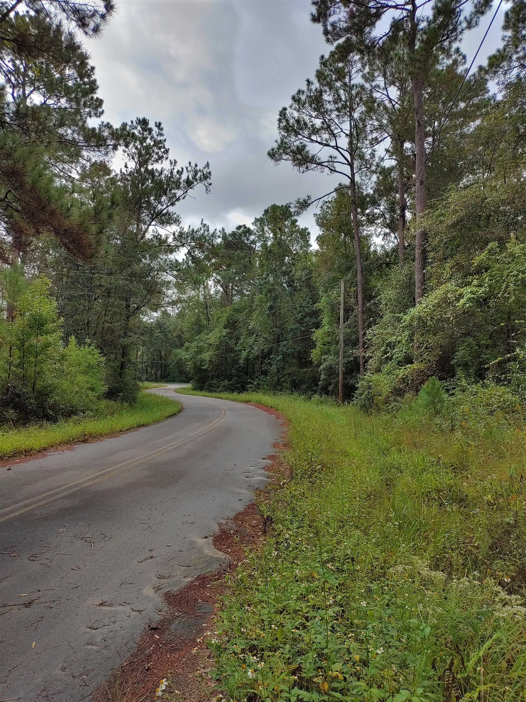 3.44 PRIVATE ACRES READY TO BUILD! CLOSE IN, JUST MINUTES TO NORTH MONROE AND ORCHARD POND PARKWAY.MOBILE HOMES ALLOWED.OLD MOBILE HOME HAS NO VALUE.