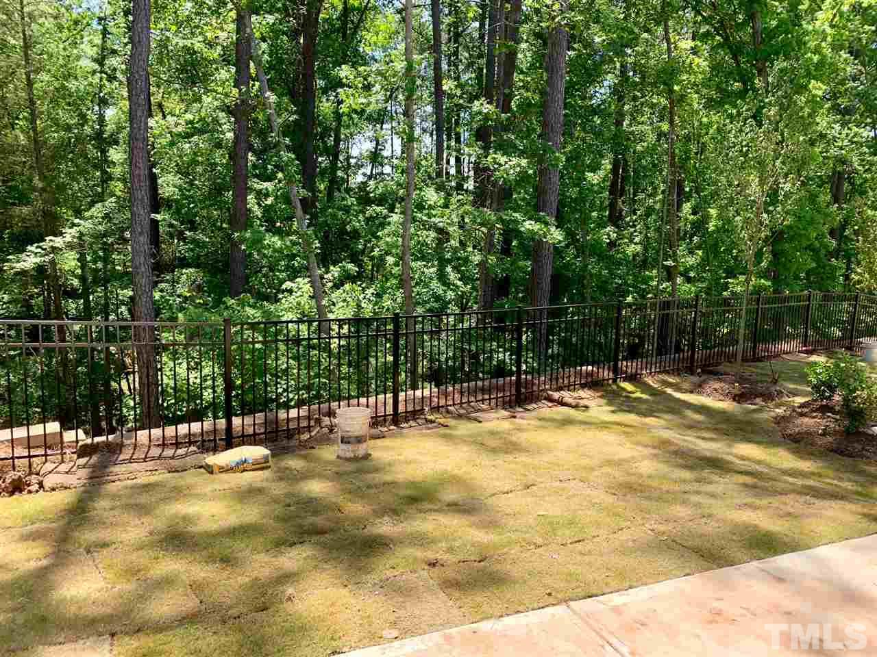 1252 Canyon Shadows Court Cary - 11